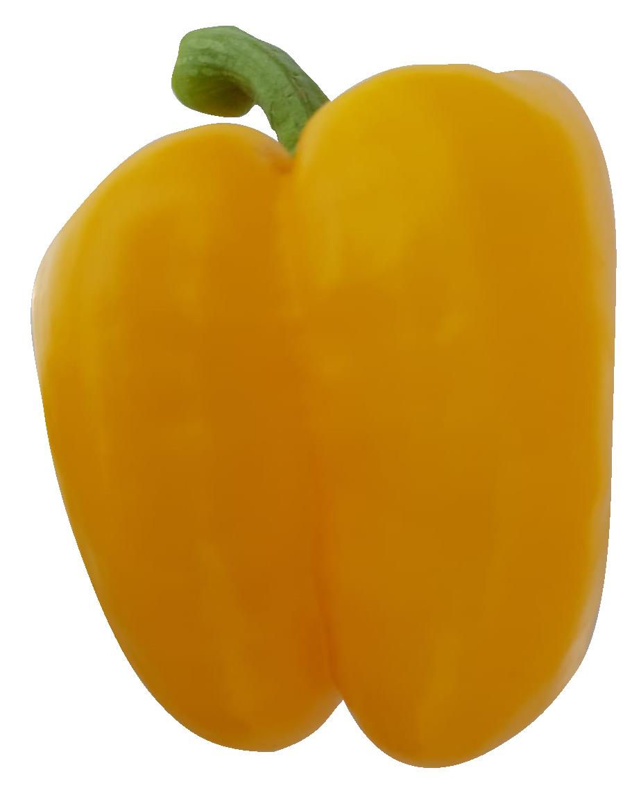 פלפל-בלוקי-צהוב-פיקה